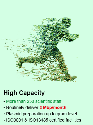 Unparalleled Capacity 3Mbp per month