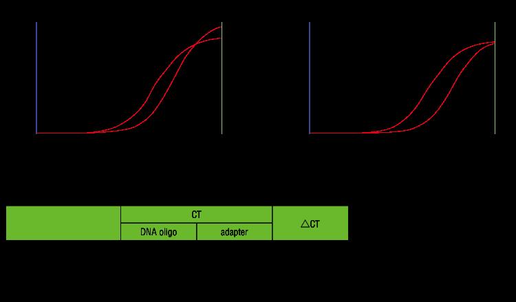 coupling-efficiency-verification