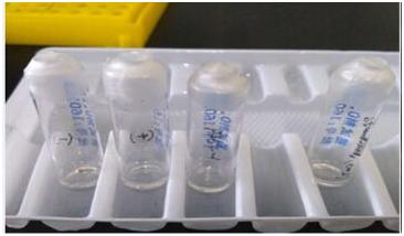 endotoxin test